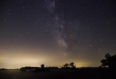 The magical milky way (Jaggy89) Tags: milkyway galaxy galacticcore stars night sky starry stardust mist trees astrophotography explorecanada canada ontario longexposure discoverontario beautiful nightglow