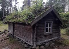 Green roof, Seurasaari, Helsinki, Finland (MacP2007) Tags: finland greenroof helsinki seurasaari