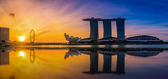 Panorama Singapore Skyline and view of skyscrapers on Marina Bay at sunrise. (Nuttawut Uttamaharad) Tags: downtown tree tower river travel view business urban night commercial marina skyline singapore light finance east evening dusk asia building wheel modern famous center reflection architecture city panorama sunset sky bay skyscrapers bridge silhouette hotel financial exterior landscape cityscape sunrise