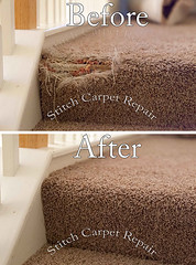 4 Carpet patch repair on the staircase Austin Round Rock Cedar Park Manor Bee Cave San Marcos (Carpet Repair) Tags: carpet repair austin kyle lakeway buda cedarpark roundrock sanmarcos beecave carpetrepair repaircarpeting carpetrepaircost carpetrepairservice carpetrepaircompanies professionalcarpetrepair carpetdamagerepair carpetrepairspecialist repairingcarpetdamage cancarpetberepaired canyourepaircarpet carpetrepairaustintx fixingcarpet carpetfixing fixcarpet austincarpetrepair cedarparkcarpetrepair roundrockcarpetrepair pflugervillecarpetrepair sanmarcoscarpetrepair westlakehillscarpetrepair wimberleycarpetrepair suncitycarpetrepair driftwoodcarpetrepair georgetowncarpetrepair drippingspringscarpetrepair kylecarpetrepair laketraviscarpetrepair lakewaycarpetrepair leandercarpetrepair manorcarpetrepair onioncreekcarpetrepair bartoncreekcarpetrepair budacarpetrepair snag tears tear torn fraying frayed unraveling hole dog cat petdamage carpetpetdamage carpetrepairpetdamageaustin carpetrepairpetdamage petdamagecarpetrepair petdamagecarpet petdamagecarpetrepairaustin repairholeincarpetcat repairholeincarpetdog