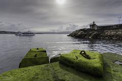 Y con visin submarina! (japortela) Tags: mar muelle barco musgo