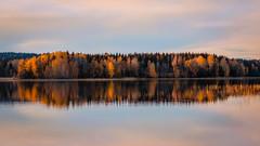 Autumnal delight (PixPep) Tags: autumn nysockensjn arvika sverige sweden scandinavia pixpep autumncolours