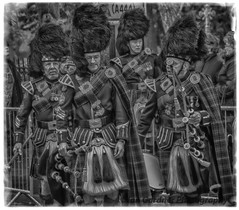 WHAT DO WE PLAY FIRST ? (IAN GARDNER PHOTOGRAPHY) Tags: armistice pipers wwi war peace march bedworth warwickshire musicians tartan bagpipes walking street streetphotography monochrome hdr hdraward streetpassionaward nikon