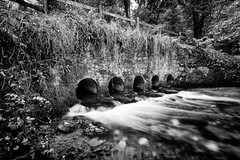 Bridge over 5 tunnels (theloneman) Tags: longexposure bridge autumn trees blackandwhite bw abstract tree nature water leaves stone forest canon fence landscape outdoors countryside blackwhite movement woods rocks stream warm cornwall alone moody arch wide wideangle tunnel blurred rapids ethereal cylinder vista dreamy ripples flowing splash 1740mm minimalist atmospheric 1740 pondering uwa cardinham cardinhamwoods canon5dmkii 5dmkii