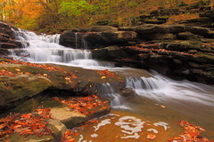 Catch-22. (MarcusDC) Tags: county autumn mill waterfall fallcolor kentucky wayne springs battlefield kentuckywaterfall