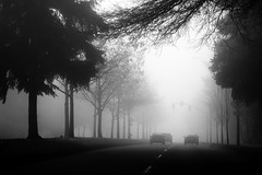 148th (sparth) Tags: seattle november trees bw fog blackwhite noir state noiretblanc sony redmond wa pnw brouillard 2012 noirblanc rx100 blancblack sonyrx100 whiteminimalwashingtonwashington