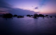 Magic sunset (Ateyah J. Hujaili) Tags: sunset cold color beach canon lens photography long jay magic smooth saudi arabia shutter yanbu شاطئ 600d بحر عطية كانون ينبع الصناعية الحجيلي alhujaili ateyah
