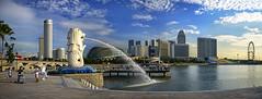 The Merlion of Singapore. In many ways we owe it to her... (williamcho) Tags: sculpture singapore jetty icon esplanade promenade merlion sunteccity mandarinoriental singaporeriver fairmonthotel marinabay swissotelthestamford luxuryhotels thesingaporeflyer topazlabadjust meritios