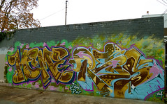 MEME x REDS (missREDS_AM7) Tags: graffiti mural meme spraypaint sacramento graff reds 004 am7 ironlak fewandfar mtn94 fewfar missreds