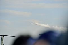 _DSC4808 (@bat1911) Tags: t4 blueimpulse jasdf iruma japanairselfdefenseforce   irumaairbase