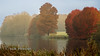 Autumnal scene (Nigel Dell) Tags: autumn landscape seasons ngdphotos