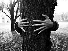 . (Freckles Jam.) Tags: park morning autumn bw parco tree boyfriend leaves foglie torino arbol hands sunday mani manos bn nails sole albero tronco autunno baum luce domenica ragazzo corteccia mattina unghie pellerina
