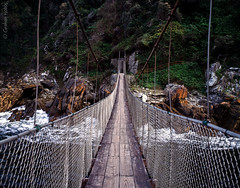 Storms river suspension bridge (1 other people) Tags: africa park bridge 120 film nature mediumformat suspension pentax south reserve velvia national transparency gorge 6x7 fujichrome 67 tsitsikamma easterncape stormsriver grahamhobbs