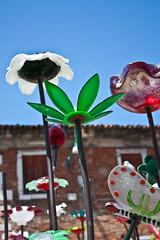 Glass Flowers (photoboland) Tags: flowers venice red italy white flower color colour green glass colors canon europe colours purple murano venizia xsi 450d canon450d canonxsi
