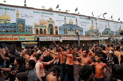 Shiite Muslims flagellate themselves during a ...