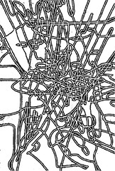 2012.11.18 Celtic Dance 5 Vectorized with a Difference (Julia L. Kay) Tags: sanfrancisco wood woman white black art mobile cheese female digital print sketch leaf salad san francisco artist arte julia kunst kay daily dessin peinture di 365 everyday dibujo woodblock touchscreen artista mda philodendron fingerpaint artiste künstler iart ipad isketch mobileart plantmonster idraw juliakay julialkay plantjungle appbwblack iamda mobiledigitalart fingerpainterouchdigitalmdaiamdamobile philodendronleavessplit leavestropical ukiyoeapponly artfingerpainterplantfoliagesplitleafphilodendronpertusumjungletropicalsplitleafsplit plantmonsteradeliciosaaroidbreadfruit plantswiss plantmonsteraaraceaearumcerimanfruit fruitmonsterio deliciomonstereomexican breadfruitsplitleaf philodendronlocustwild honeywindowleafdelicious monsterepiphytezampa leoneadams ribsshadowshadowssilhouetteukiyoeukiyoeukiyoeappukiyoe