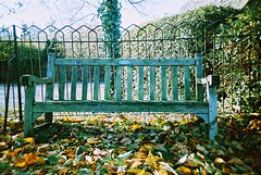 lc-a+ - rustic bench (johnnytakespictures) Tags: park old autumn film leaves gardens bench leaf lomo lca xpro lomography crossprocessed seat rustic grain lomolca analogue coventry noise autumnal chromatic memorialpark sunsetstrip