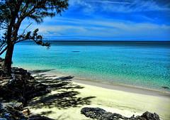 Beach scene at Current, Eleuthera