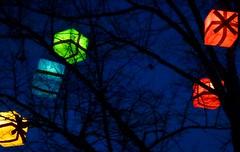 Gifted (brandsvig) Tags: christmas november tree sweden gifts presents sverige jul malm trd 2012 gustavadolfstorg julklappar slne