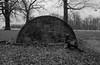 FTNTriXa (geoffnik) Tags: nikon kodak trix nikonf richmondpark ftn photomic nikkorh50mmf2 y44 coolscanls5000ed