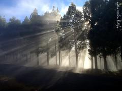 """Paisajes de la Naturaleza...Coleccin: "" (Aysha Bibiana Balboa) Tags: las paisajes naturaleza sol de lava mar lluvia agua rboles paisaje nubes gran cielos atardeceres balboa neblina palma anochecer reflejos coleccin aysha largaexposicin bibiana thegalaxy pasisaje canariaplaya paisajesde ayshabibianabalboa coleccinel paisajesdelanaturaleza acantiladosolasmarlaspalmasdegrancanaria paisajesdelanaturalezacoleccin ayshabibianabalba maraguacielonubesfiordosplayaamanecratardecerlagosreflejosfotografia reflejosbergenaysha baboa grancanariapaisajesdelanaturaleza paisajesdegrancanarias acantiladospuesta playasmaratardecerocasoefectosedamarinasayshabibianabalboareflejosfotografianocturnalaspalmadegrancanarialas canterasolasfotosdelargaexposicin marinosmarinas"