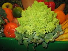 Romanesco Cauliflower. (MTBradley) Tags: macro farmersmarket vegetable cauliflower berkshirecounty romanescocauliflower romanescobroccoli romancauliflower muddybrookelementaryschool