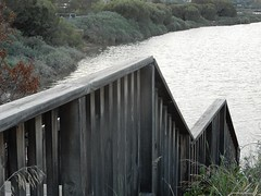 Zig Zag to the River (mikecogh) Tags: portnoarlunga zigzag onkaparingariver fence palings