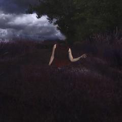 Headless Ghost (Erin Graboski) Tags: eringraboski eringraboskiphotography art artist fineartphotography fineart fineartconceptualphotography fineartportraiture conceptual conceptualart conceptualportraitphotography conceptualphotography squareformat selfportrait selfportraitphotography selfportraiture squareformatphotography photography portrait portraitphotography darkart fantasy fantasyphotography surreal surrealphotography