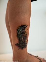 P7310820 (Cardinal Guzman) Tags: 2016 belfast northernireland paulowen titanicinternationaltattooco hummingbird ink tattoo tattoos titanicinternationaltattooconvention