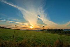 Frh Morgens (impossiblejoker) Tags: sonnenaufgang sunrise wiese gras sonne sun meadow nature natur landschaft landscape sky clouds red capture stimmung d610 nikon
