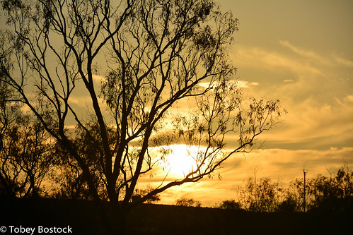 Sunrise at Innamincka