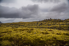 Berserkjahraun 29 (raelala) Tags: 2016 berserkjahraun snaefellsnes snaefellsnespeninsula canon1785mm crater europe europeantravel iceland icelanding2016 lava lavafield photographybyrachelgreene ringroad roadtrip scandinavia thatlalagirl thatlalagirlphotography thatlalagirlcom travel