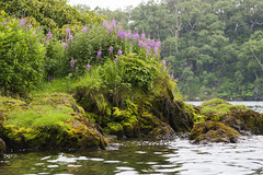 Kurilskoye lake  - Kamchatka - Russia (wietsej) Tags: kurilskoye lake kamchatka russia sonyalphadslra900 sal70400g landscape nature mos