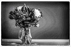 251/366 Vase Of Flowers (crezzy1976) Tags: nikon d3100 crezzy1976 photographybyneilcresswell photoaday vase flowers blackandwhite monochrome photoborder 365 366challenge2016 day251