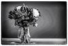 251/366 Vase Of Flowers (crezzy1976) Tags: nikon d3100 crezzy1976 photographybyneilcresswell photoaday vase flowers blackandwhite monochrome photoborder 365 366challenge2016 day251