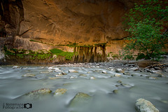 Refuge (borremans15) Tags: usa zion national park narrows river gorge kloof rivier amerika long exposure water rocks stenen nationaal natuur nature dream dreamy droom dromerig