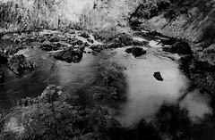 Swallow Falls (Dave.Miles) Tags: swallowfalls olympus olymousom1n 35mm 35mmfilm blackandwhite