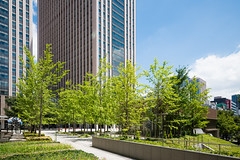 Central Government Building No.7 on plaza (7) (christinayan01) Tags: architectrure building perspective tokyo government japan office business