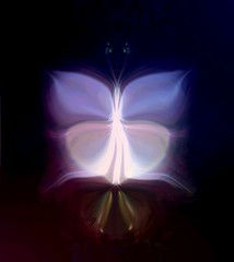 Dark Butterfly (rhonda_lansky) Tags: dark darkness butterfly darkart butterflyart light coloredlights
