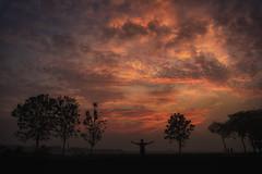 Dreamer.. (jamessurajbarwa) Tags: tree sunset landscape nature light cloud cloudscape shadow silhouette nikon dark skyline sundown stormy self portrait backlight james dreamer far away infinite kolkata timer after storm barwa barrackpore suraj wonder