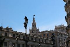 Sevilla (8) (crgmry) Tags: sevilla seville wintersun city espana spain historic historiccity