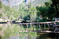 DSC_9973.jpg (Christsstar) Tags: camping tree mercedriver reflection fb lengerawhile yosemite yosemitevalley slate cathedralbeach