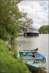 Courlon-sur-Yonne (GK Sens-Yonne) Tags: yonne bourgogne courlon courlonsuryonne barque embarcation pniche berge canard