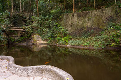 DSC_3673 (sergeysemendyaev) Tags: 2016 rio riodejaneiro brazil    corcovado trilhadocorcovado  hiking     parquelago trilha nikon