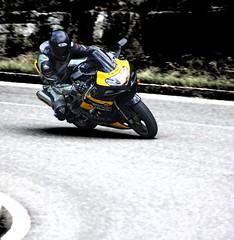 SUZUKI (driver Photographer) Tags:   aprilia cagiva honda kawasaki husqvarna ktm simson suzuki yamaha ducati daytona buell motoguzzi triumph bmv driver motorcycle leathers dainese