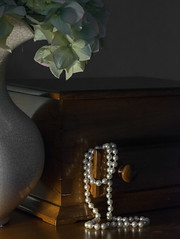 Morning on the Old Jewel Box (Explored) (lclower19) Tags: lowkey pearls wood pitcher hydreangeas jewelbox odc 3852 522016 explored stilllife odt darkness