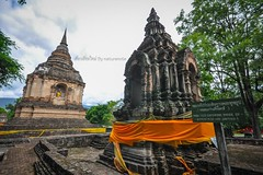 Chiang mai temple present by naturenote_E12403605-011 (10tis.com) Tags: