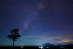 The Milky Way (PongsawatD) Tags: longexposure sky tree nature night canon landscape eos star evening nightscape nightsky milkyway eos450d ef1740f4lusm 450d blinkagain bestofblinkwinners blinksuperstars