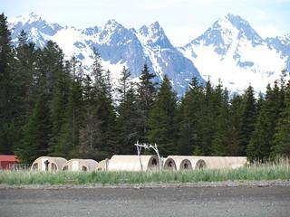 Alaska Kenai River Fishing and Saltwater 22