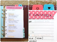 Reference Section (SmplyCar) Tags: true one setup planners organization planner filofax onetruefilofax whatsinmyfilofax